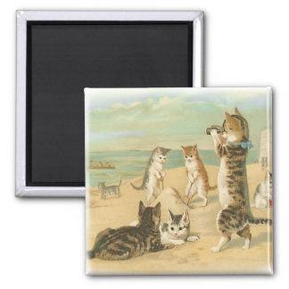 Beach Kittens Refrigerator Magnets