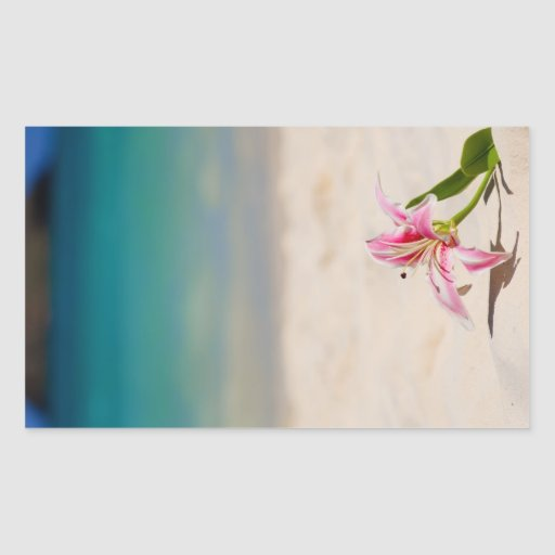 Beach Lily Sticker