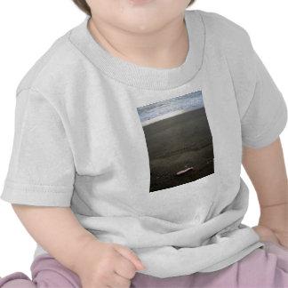 Beach litter plastic doll leg with sunrise tee shirts