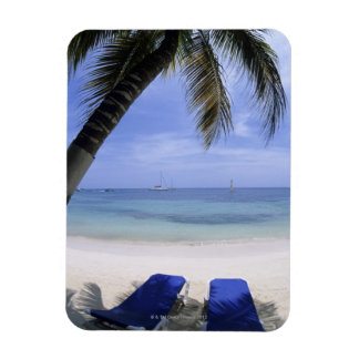 Beach, Lounge Chair, Palm tree, Horizon Over Magnet