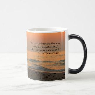 Beach Mug - Jeremiah 29:11