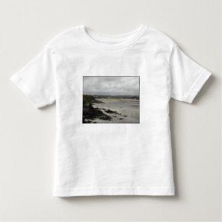 Beach near Rosscarbery Bay, Ireland. Toddler T-shirt