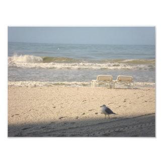 Beach Ocean Chairs Seagull Art Photography Print Photographic Print
