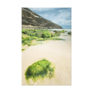 Beach of Llanes Impresión En Lienzo