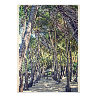 Beach of Pompierre- the Holy ones (the Guadeloupe) Card