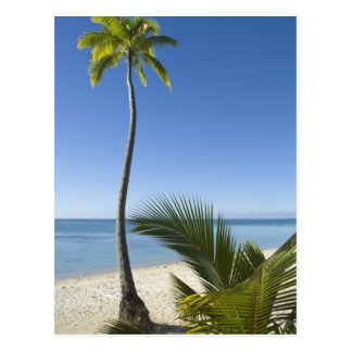 Beach on mainland Aitutaki, Cook Islands Postcard