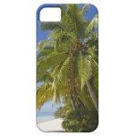 Beach on One Foot island, Aitutaki, Cook Islands iPhone SE/5/5s Case
