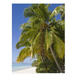 Beach on One Foot island, Aitutaki, Cook Islands Post Card