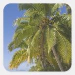 Beach on One Foot island, Aitutaki, Cook Islands Square Sticker