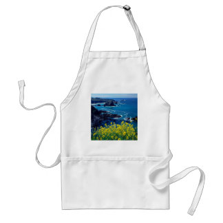 Beach Pacific Coastline Wildflowers Mendocino Aprons