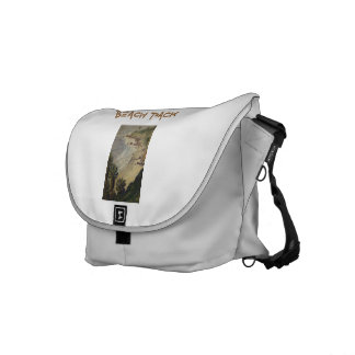 Beach Pack Courier Bag