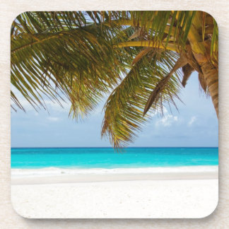 beach palm branches tree tropical island sand sea coaster