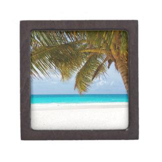 beach palm branches tree tropical island sand sea jewelry box