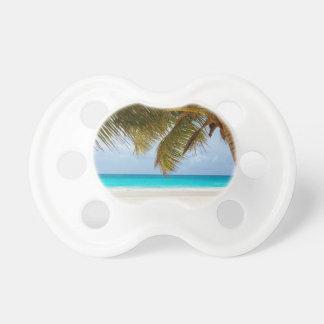 beach palm branches tree tropical island sand sea pacifier