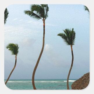 Beach Palm Square Sticker