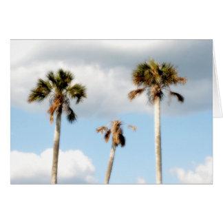 Beach Palm Trees Card