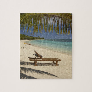 Beach, palm trees & lounger jigsaw puzzle