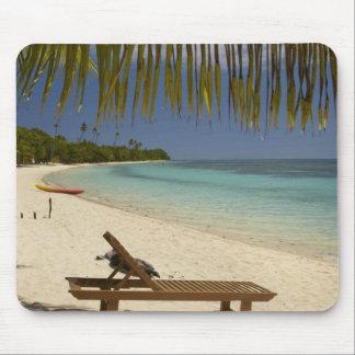Beach, palm trees & lounger mousepad