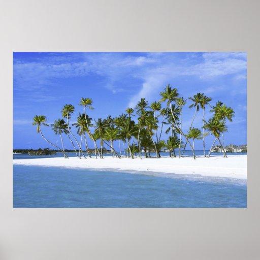 beach paradise with hammock_Maldives poster