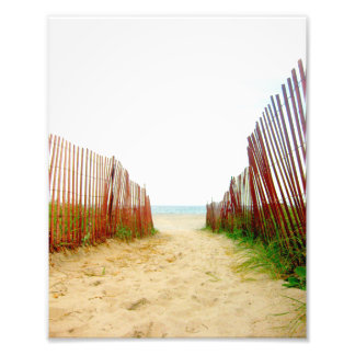 Beach Path Fence Photo