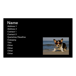 Beach Patrol Officer Double-Sided Standard Business Cards (Pack Of 100)