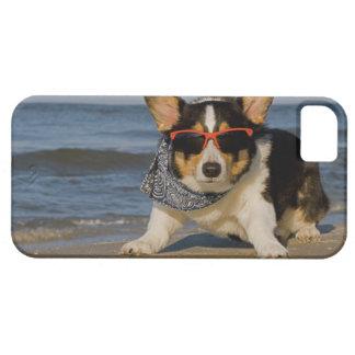 Beach Patrol Officer iPhone SE/5/5s Case