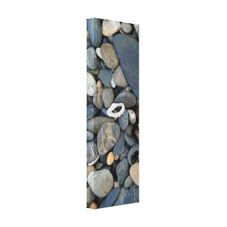 Beach Pebbles and Shell Coffs Harbour Canvas Print