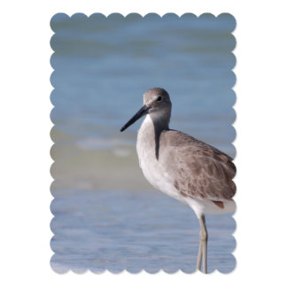 "Beach Plover 5"" X 7"" Invitation Card"