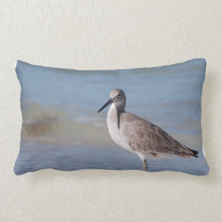Beach Plover Lumbar Pillow