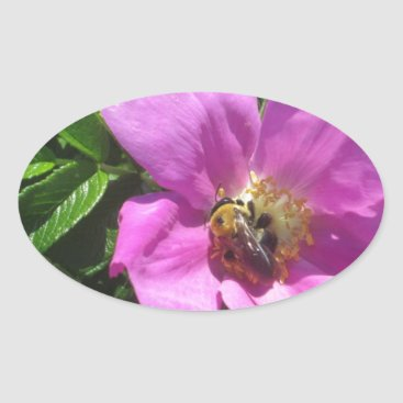 Beach Themed Beach Plum Rose with Bee Oval Sticker