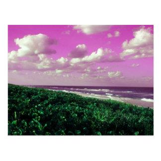 beach post card