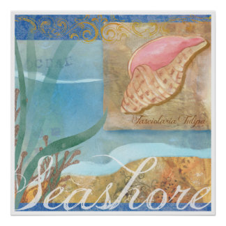 "Beach Poster IV, ""Seashore with Tulip Shell"""