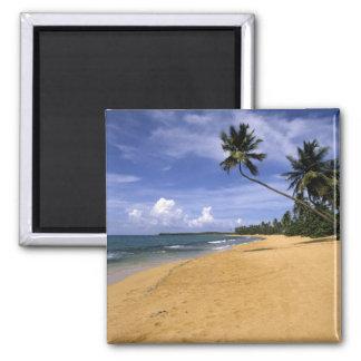 Beach Puerto Rico 2 Magnet