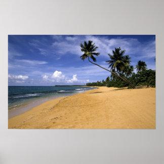 Beach Puerto Rico 2 Posters