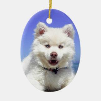 Beach Puppy Dog Fluffy White Animal Summer Photogr Ceramic Ornament