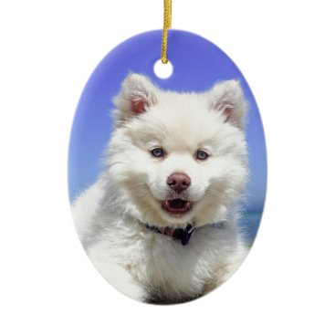 Beach Themed Beach Puppy Dog Fluffy White Animal Summer Photogr Ceramic Ornament
