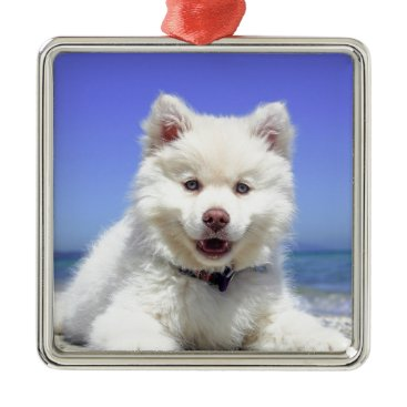 Beach Themed Beach Puppy Dog Fluffy White Animal Summer Photogr Metal Ornament