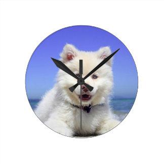 Beach Puppy Dog Fluffy White Animal Summer Photogr Round Clock