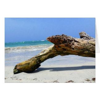 Beach Relic Card