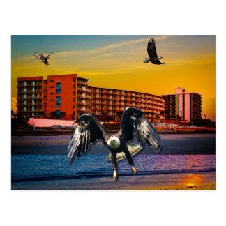 Beach Resorts in Daytona Beach Florida Landscape Postcard