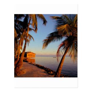 Beach Roatan Honduras Postcard