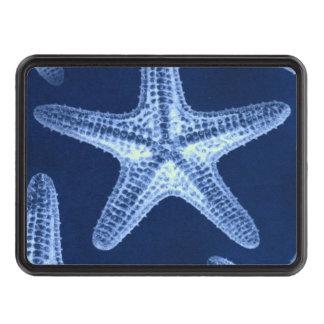 beach rustic shabby chic nautical starfish hitch cover