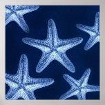beach rustic shabby chic nautical starfish poster