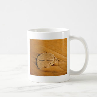 beach, sand dollar, waves, sand coffee mug