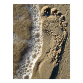 Beach Sand Footprint Postcard