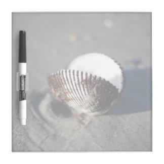 Beach Sand Sea Shell Dry Erase Board