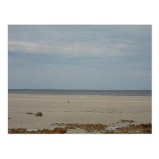 Beach Scape Postcard