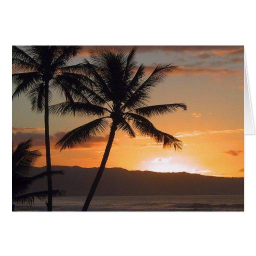 beach scene palm trees greeting card