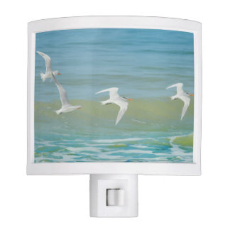 Beach Scenic Night Light