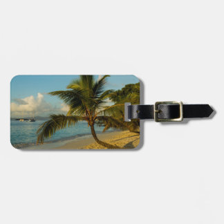 Beach scenic tag for luggage